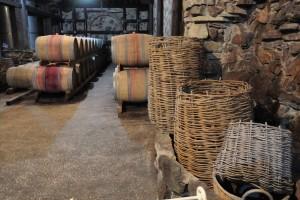 Marvelous region of Georgia — the sunny winery of Kakheti